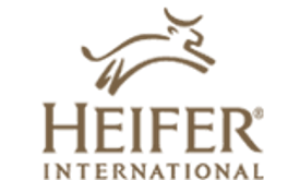 heirfer-international